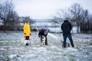 Gruppencoaching © J. Fiedler